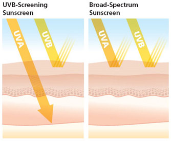 UV rays blocked by broad-spectrum sunscreen